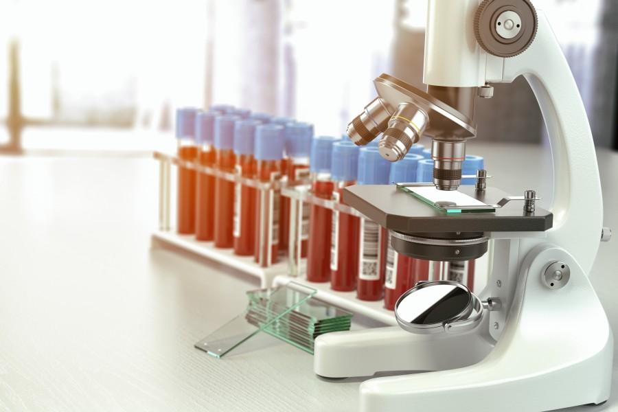 Eozynofile - normy morfologii krwi
