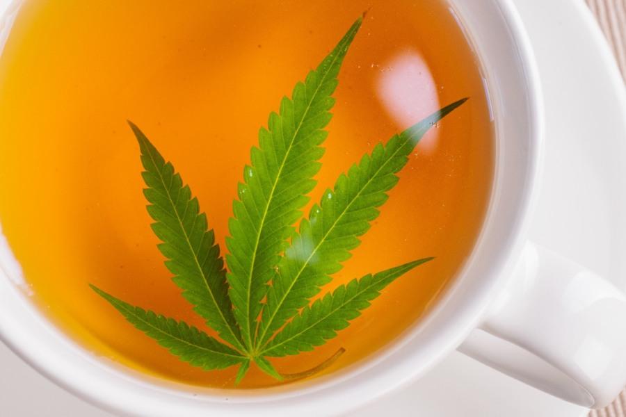 Biała filiżanka z zaparzoną herbatą z konopi.