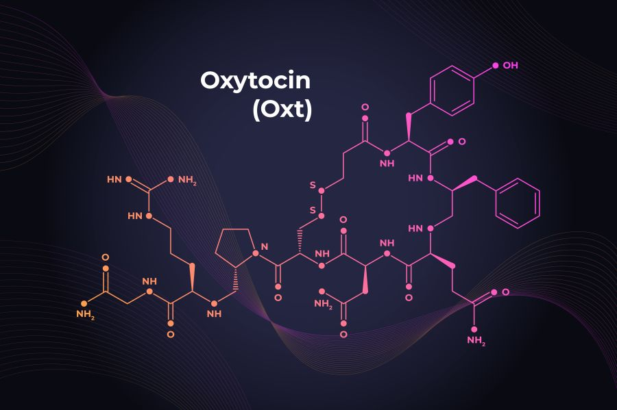 Oksytocyna − czym jest i za co odpowiada?