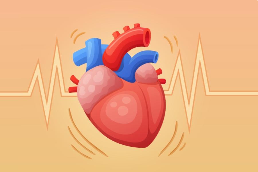Rysunkowe, bijące serce na pomarańczowym tle z widoczną linią obrazującą tętno.