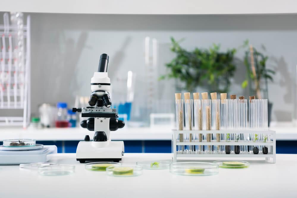 W jaki sposób dobrać sprzęt laboratoryjny?