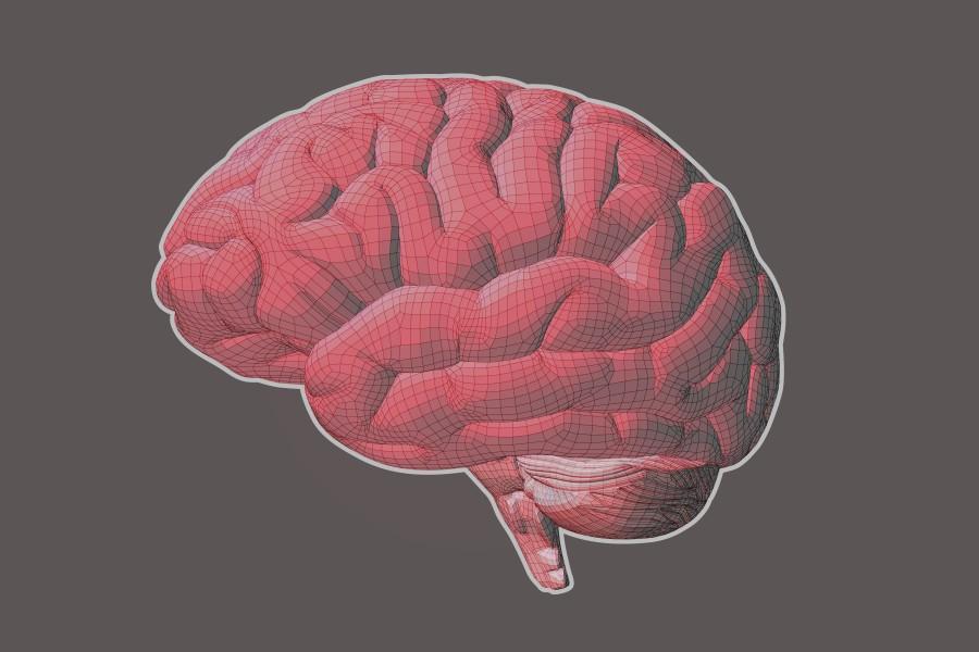 Zapalenie opon mózgowych - przyczyny i objawy