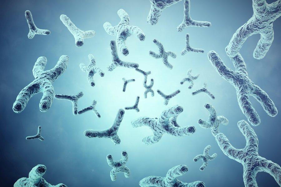 Zespół Klinefeltera a problem z płodnością u mężczyzn
